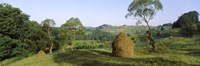 Framed Haystack at the hillside, Transylvania, Romania