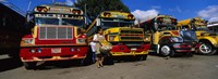 Framed Buses Parked In A Row At A Bus Station, Antigua, Guatemala