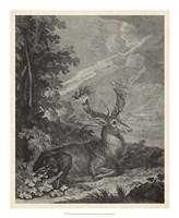 Framed Woodland Deer III