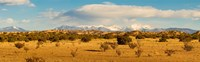 Framed High desert plains landscape with snowcapped Sangre de Cristo Mountains in the background, New Mexico