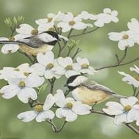 Framed Springtime And Chickadees