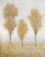 Framed Autumn Springs II