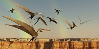 Framed flock of Pterodactyls fly out of a canyon