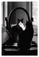 Framed Reflection