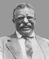 Framed Theodore Roosevelt Smiling