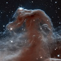 Framed Hubble Sees a Horsehead of a Different Color