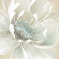 Framed Winter Blooms I