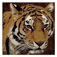 Framed Tiger 2