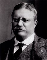 Framed Theodore Roosevelt, 26th President of the United States
