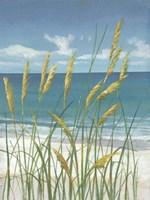 Framed Summer Breeze II