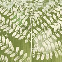 Framed Jade Foliage