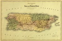 Framed Island of Puerto Rico Map