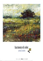 Framed Harmony of Color II
