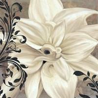 Framed Winter White II