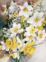 Framed Spring Daffodils