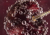 Framed Marroon Fruit Closeup With Raindrops II