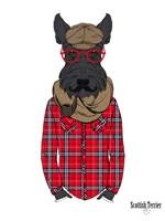 Framed Scottish Terrier In Pin Plaid Shirt