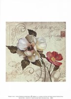 Framed Fleurs De Paris 1