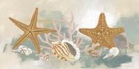Framed Marine Tableau II
