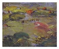 Framed Koi & Lilies I