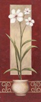 Framed White Flowers In Pot 2