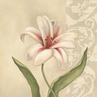 Framed Cream Lily