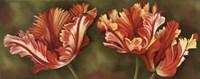 Framed Summer Blossoms 3