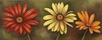 Framed Summer Blossoms 4