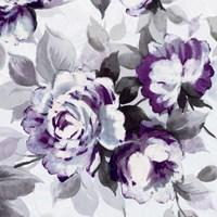 Framed Scent of Roses Plum III