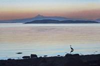 Framed Tranquil Dawn