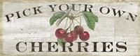 Framed Farm Fresh Cherries