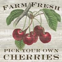 Framed Farm Fresh Cherries I