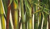 Framed Bamboo on Beige I