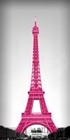 Framed Pretty in Paris