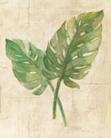 Framed Monstera Leaves Neutral Crop
