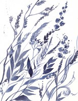 Framed Meadow VI