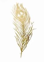 Framed Gold Foil Feather II - Metallic Foil