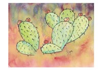 Framed Prickly Pear Cactus