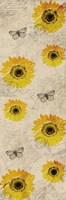 Framed Vintage Sunflowers
