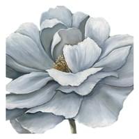 Framed Blue Silken Bloom