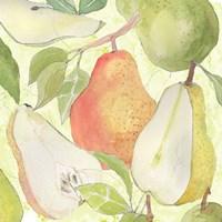 Framed Pear Medley I
