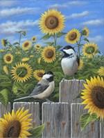 Framed Chickadees And Sunflowers