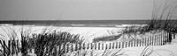Framed Fence on the beach, Bon Secour National Wildlife Refuge, Bon Secour, Alabama