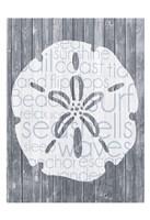 Framed Shell Wood Panel