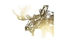 Framed Gold Foil Moose
