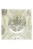 Framed Metallic Shell Tiles II