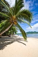 Framed Privite Island Resort, Taveuni, Fiji