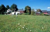 Framed Woman Riding Horseback on Skiff Mountain, Litchfield Hills, Connecticut