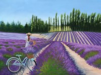 Framed Picking Lavender