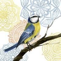 Framed Mandala Bird I